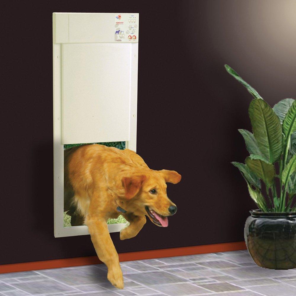 Remote Control Dog Door Photos Wall And Door Tinfishclematis