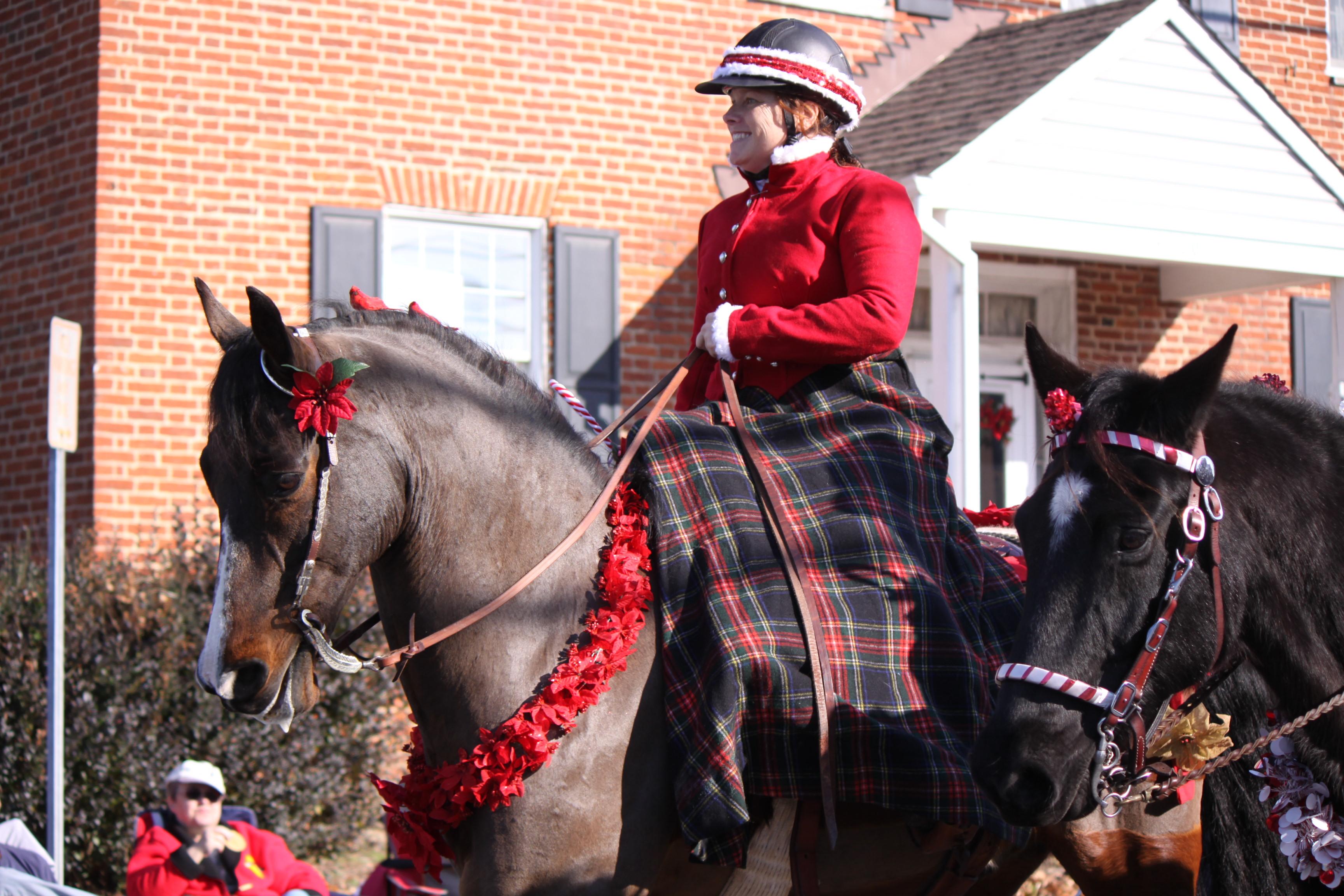 Horses Celebrate Christmas With A Parade Petslady Com