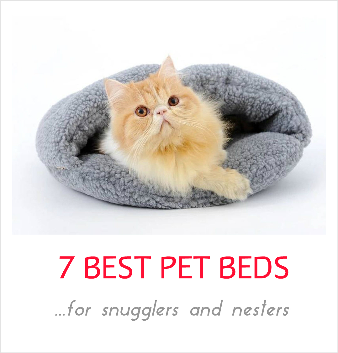 b687a2183d38 7 Best Cozy Pet Beds For Snugglers