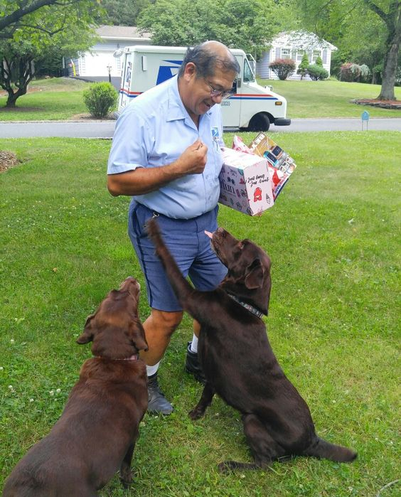 Mailman and Dogs