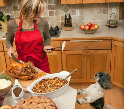Dog helping Mom cooking turkey dinner