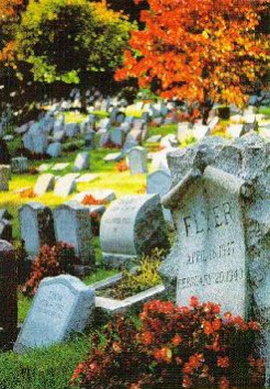 Scene from Hartsdale Pet Cemetery & Crematory: © Hartsdale Pet Cemetery & Crematory