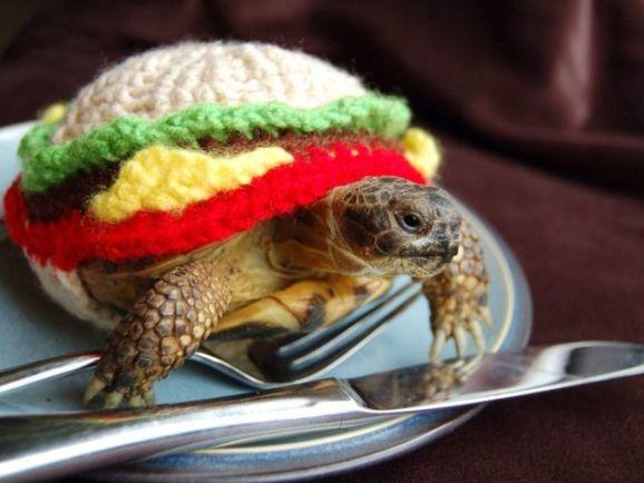 Turtle Burger (Image via The Guardian)