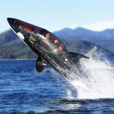 The Killer Whale Submarine cabin: by Hammacher Schlemmer