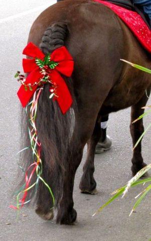 Horse's Christmas Tale