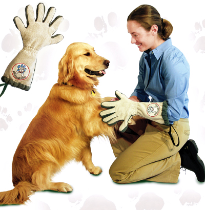 The Spotless Paw Glove is easy to use