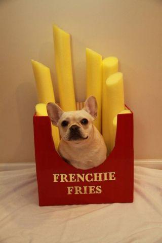 Frenchie Fry (Image via Cosmopolitan)