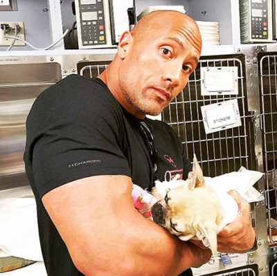 Dwayne 'The Rock' Johnson and his puppy Brutus.