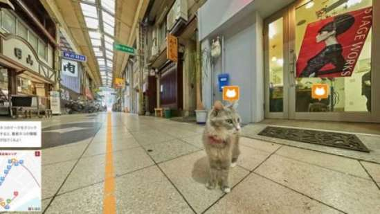 Japanese cat map; a cat's eye view of the town of Onomichi: image via popsci.com