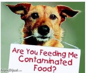 Are you feeding your pets contaminated food?