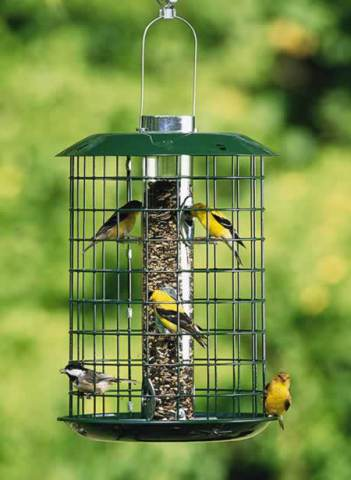 Duncraft Metal Selective feeder for small birds