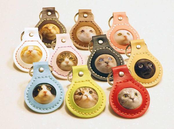 3D Cat Face Key Holder Gives Cat Fanciers A Little Relief