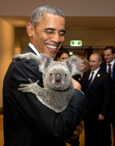President Barack Obama and Koala (Image via WhiteHouse.gov)