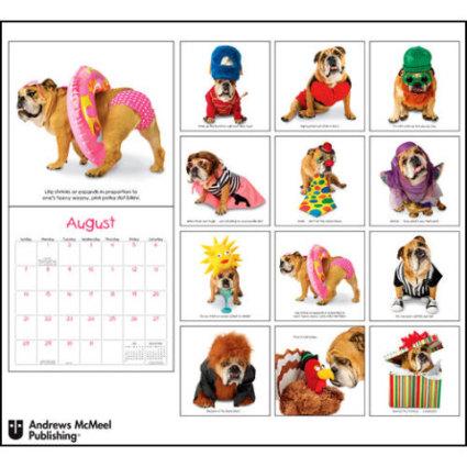 Zelda Wisdom 2011 Dog Wall Calendar