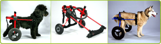 how to make a front support dog wheelchair
