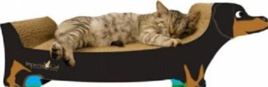 Dachshund Cat Scratcher