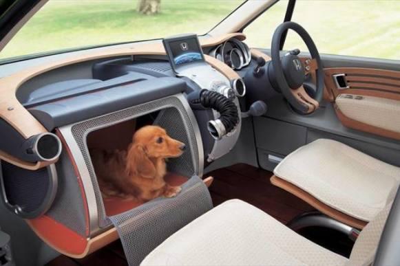 """""""Love"""" Compartment Dog (Image via Frans de Waal)"""
