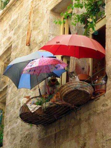 Balcony Cats (Image via tumblr)