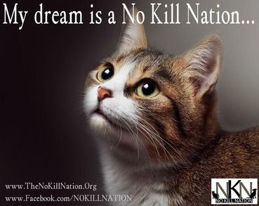 No Kill Nation: NoKillNation.org