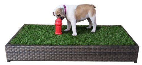 The Porch Potty Premium Grass Litter Box For Dogs is a great solution for  owners with a patio and a source for a hose that they can use for the potty. - 5+ Best Indoor Doggy Potty Solutions To Free You From The Leash