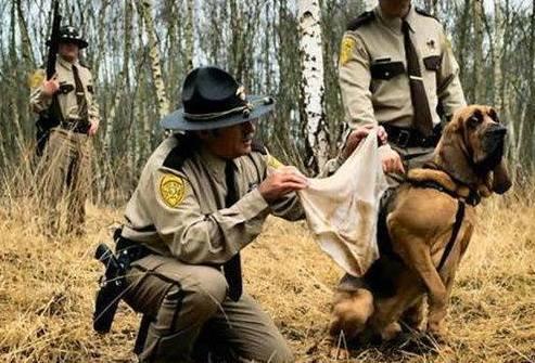 Reluctant Tracking Hound (Image via KSSN 96)