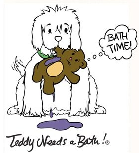 Teddy Needs A Bath Washer & Dryer Laundry Bag