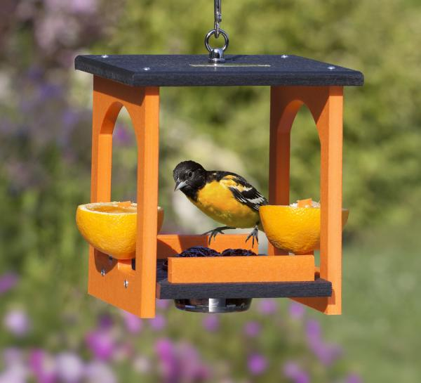 Oriole Fruit & Jelly Gazebo Feeder