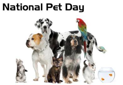 Did You Miss National Pet Day?
