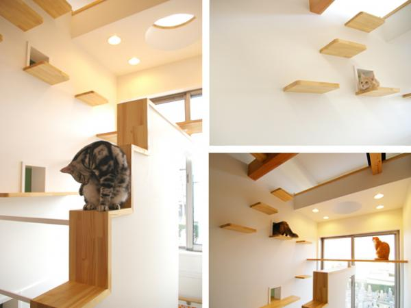 "Fauna+DeSIGN ""Cat's House"""