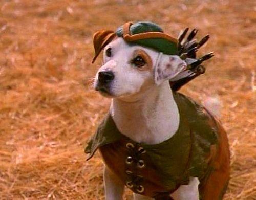 Robin Hood Dog (Wishbone)