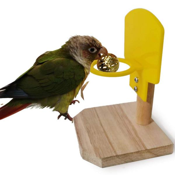 Foreen Funny Basketball Hoop For Birds