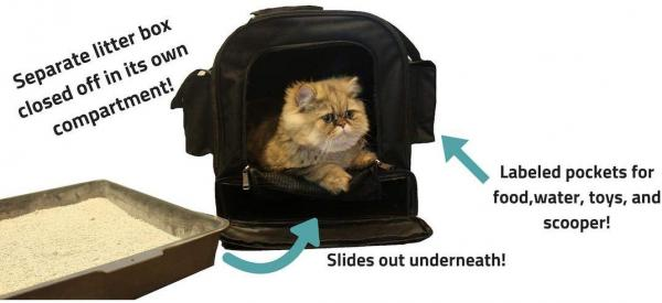 Kitty Obsession All-in-One Cat Carrier