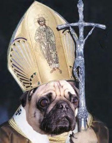 Pope Pug