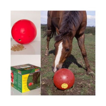 Snak-A-Ball Horse Toy