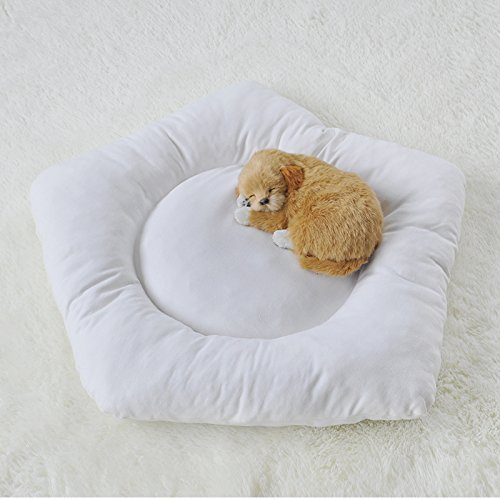 Little Dove Pet Cushion