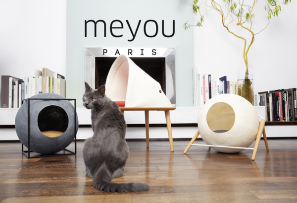 Meyou Paris designs for cats