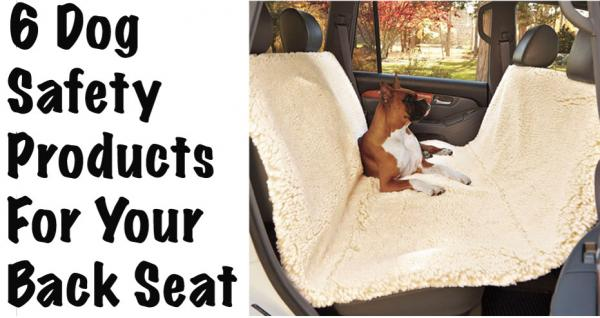 6 dog safety products for the car