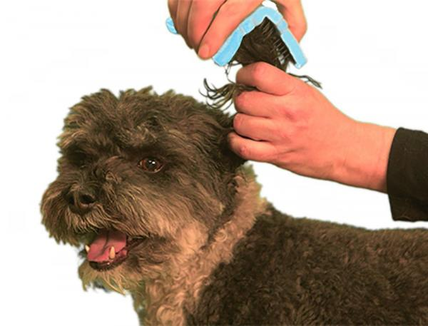 BendiBrush for dogs and cats