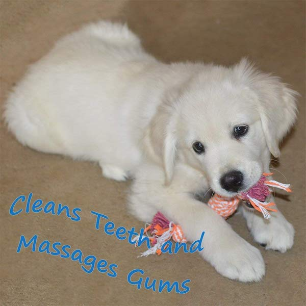Alvi & Remi Puppy Teething Rope Set