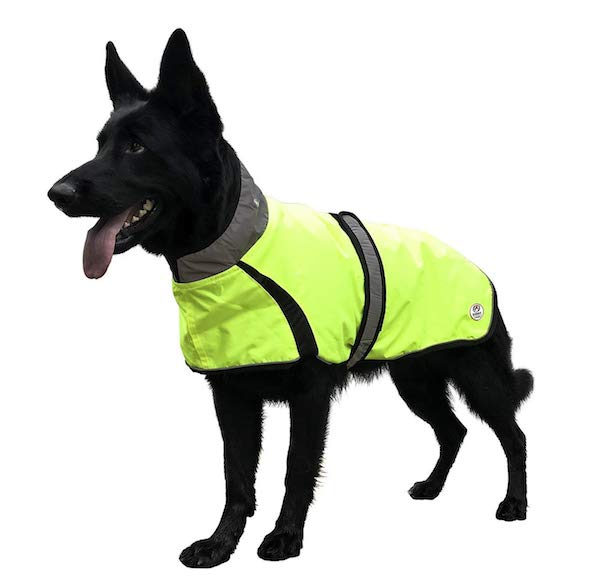 Derby Originals Light Up LED Waterproof Dog Jacket