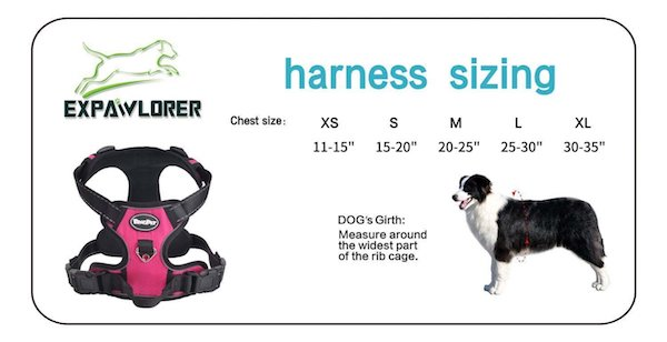 EXPAWLORER Best No-Pull Dog Harness