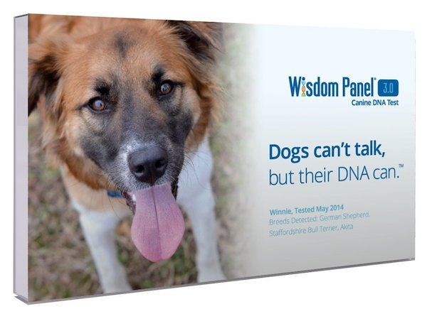 Wisdom Panel Canine DNA Test 3.0