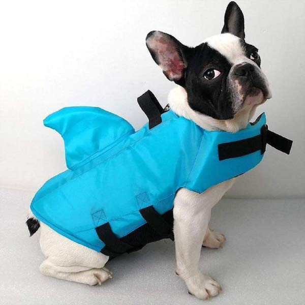 SwimWays Sea Squirts Dog Life Vest w/Fin