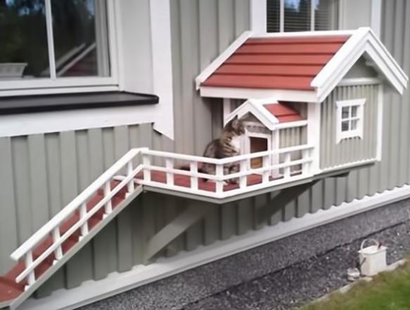 Comfy Cat House