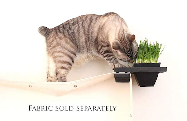 CatastrophiCreations Cat Mod Planter Wall-mounted Shelf with Planter for Cat Grass