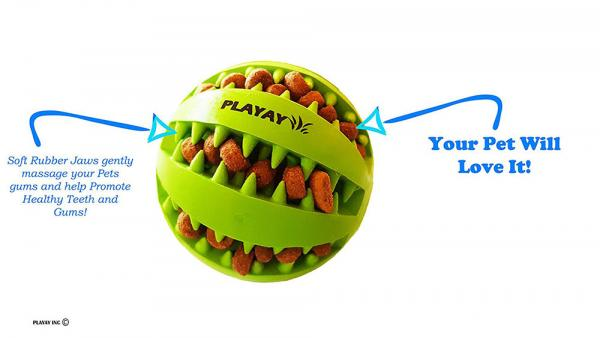Playay Treat & IQ Ball