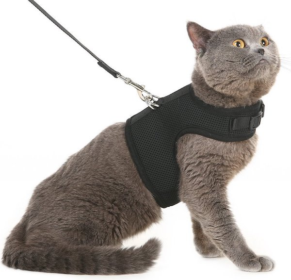 Pupteck cat harness