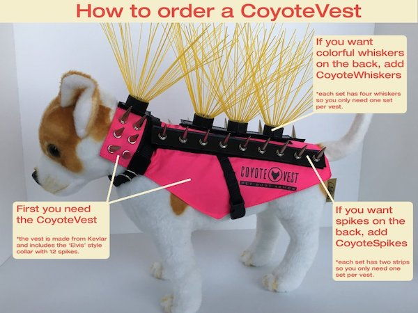 CoyoteVest whiskers
