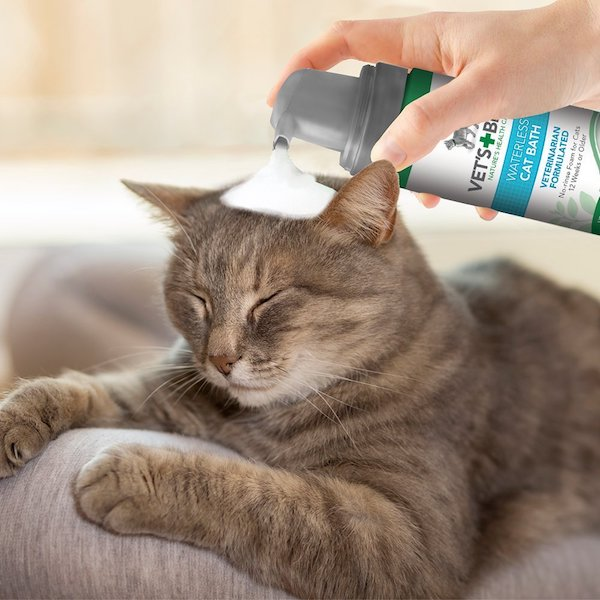 Vet's Best No-Rinse Cat Shampoo