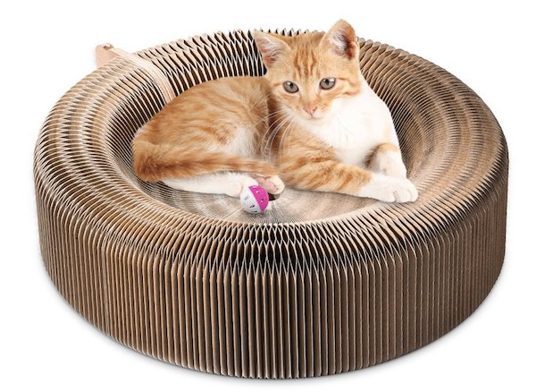Youthink Variable Shapes Cat Scratcher Lounge